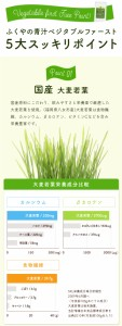 お徳用 ふくやの青汁 ベジタブルファースト (2.5g×100P) 飲みやすい緑茶味の 青汁 酵素ドリンク 【メール便送料無料】 酵素ダイエット