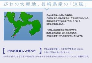 《送料無料》長崎県産 びわ「涼風」3〜5L 約1kg 化粧箱 ※冷蔵 ☆