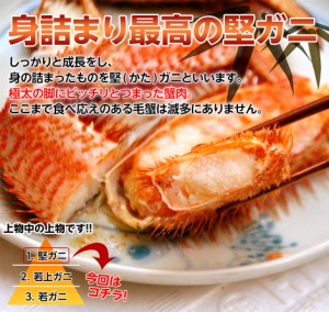 ≪送料無料≫北海道産 極大 「毛蟹」 1尾×1.2kg以上 ※冷凍 ☆