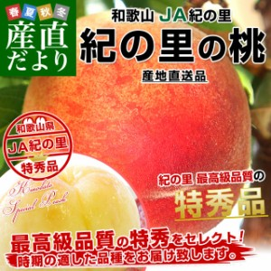 送料無料 和歌山県より産地直送 JA紀の里 紀の里の桃 特秀品 約1.8キロ(6玉から8玉)桃 もも  産直だより