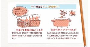 こだわり乾燥野菜 熊本県産 大根葉 40g×5袋     【全国宅配便 送料無料】【吉良食品 国内産100% だいこんな】