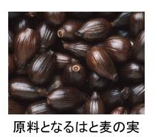 国産はと麦茶  5gx24袋 x 4箱 【ハトムギ・鳩麦/がんこ茶家】