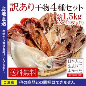 送料無料 干物 訳あり 沼津訳あり干物セット約1.5kg わけあり ワケアリ (nkk)