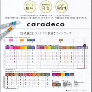 中野製薬 キャラデコ HAIR COLOR アルカリ グレージュ(GG/m) 80g