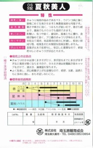 埼玉原種育成会 キュウリ 夏秋美人 約20粒【郵送対応】