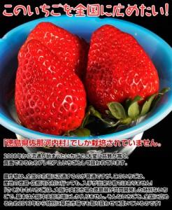 【シークレットセール】徳島県佐那河内産「さくらももいちご」化粧箱 20〜28粒 約700g 冷蔵 ☆