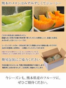 メロン 熊本県産メロン(赤肉or青肉:アンデス・クインシーなど) 大玉2玉セット 約1.8kg(900g前後×2玉) ※常温・送料無料