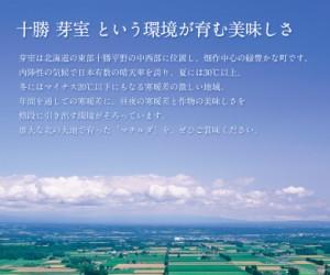 ≪送料無料≫北海道・芽室産 『マチルダ(じゃがいも)』M〜Lサイズ 約10kg ※常温 ☆