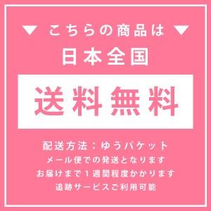 【送料無料】ラングドシャ2種セット18枚入<通販限定のお試しお菓子セット> メール便発送