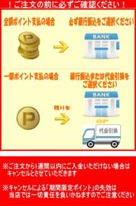 【ポイント消化に!】三菱UFJニコスギフトカード GIFT CARD 1,000円×10枚セット 10,000円分(34995)
