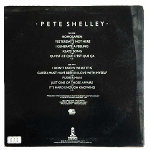 PETE SHELLEY HOMOSAPIEN (アナログ盤レコード SP LP)■
