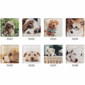 マグネット 磁石 アニマルマグネット DOG 犬 ANIMAL MAGNET