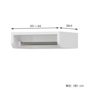 壁面収納 ポルターレクローク専用 連結ハンガー 幅20〜44cm オーダー ( 整理棚 クローゼット 突っ張り )
