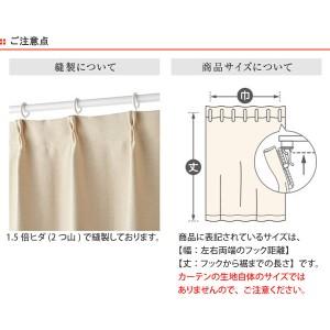 カーテン スミノエ SHIRAKABA シラカバ 遮光カーテン 100x200cm