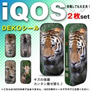 アイコスシール アイテム 写真 サバンナ 獣 ビースト ジャングル 帝王 王者 ライオン タバコホルダー たばこグッズ i iqos-q0002-a0060-a