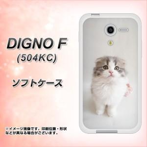 softbank DIGNO F 504KC TPU ソフトケース / やわらかカバー【VA803 まっていますネコ 素材ホワイト】 UV印刷 (softbank ディグノF 504K