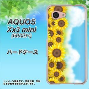 softbank AQUOS Xx3 mini 603SH ハードケース / カバー【148 ひまわり畑 素材クリア】(アクオス Xx3 mini 603SH/603SH用)