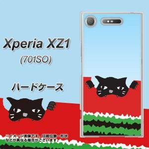 Xperia XZ1 701SO ハードケース / カバー【IA815 すいかをかじるネコ(大) 素材クリア】(エクスペリア XZ1 701SO/701SO用)