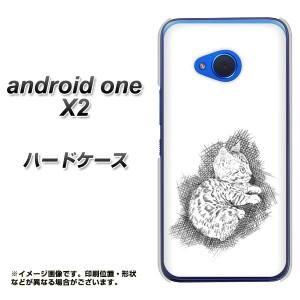 android one X2 ハードケース / カバー【YJ264 ベンガル 素材クリア】(アンドロイドワン X2/ANDONEX2用)