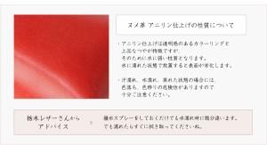 グローケース 手帳型 栃木レザー アニリン glo グロー ケース 本革 レザー おしゃれ プレゼント ギフト メール便送料無料