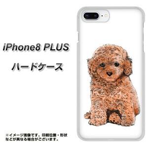 iPhone8 PLUS ハードケース / カバー【YJ195 トイプードル 犬 かわいい 素材クリア】(アイフォン8 プラス/IPHONE8PULS用)