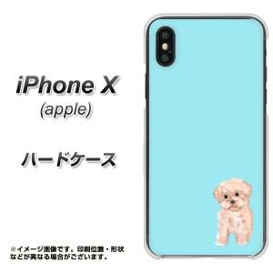 Apple iPhone X ハードケース / カバー【YJ062 トイプー04 ブルー  素材クリア】(アップル アイフォンX/IPHONEX用)