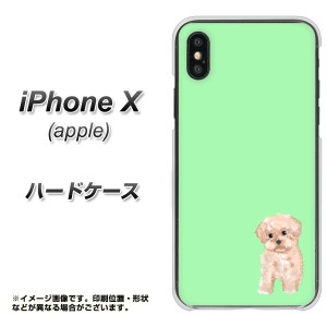 Apple iPhone X ハードケース / カバー【YJ063 トイプー04 グリーン  素材クリア】(アップル アイフォンX/IPHONEX用)