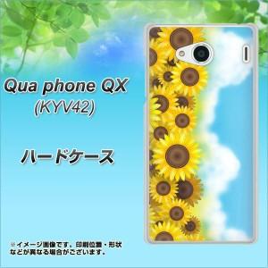 Qua phone QX KYV42 ハードケース / カバー【148 ひまわり畑 素材クリア】(キュアフォン QX KYV42/KYV42用)