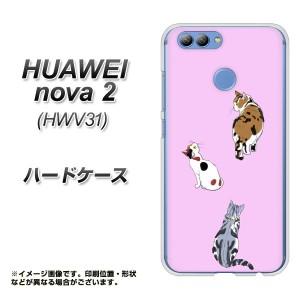 UQ mobile HUAWEI nova 2 ハードケース / カバー【YJ217 猫 素材クリア】(uqモバイル HUAWEI nova2/NOVA2用)