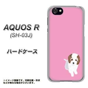 AQUOS R SH-03J ハードケース / カバー【YJ057 トイプー03 ピンク  素材クリア】(アクオスR SH-03J/SH03J用)