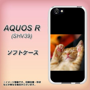 AQUOS R SHV39 TPU ソフトケース / やわらかカバー【VA804 爆睡するネコ 素材ホワイト】(アクオスR SHV39/SHV39用)