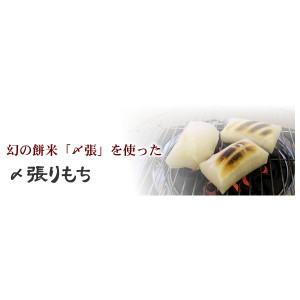 幻の〆張り餅20個入り 〔送料無料〕