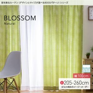 窓を飾るカーテン(デザインとサイズが選べる8000パターン)ナチュラル BLOSSOM(ブロッサム) 遮光2級 形態安定 (MZ) 幅100cm×丈2...