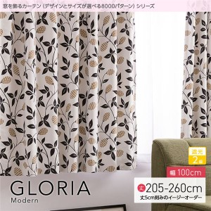 窓を飾るカーテン モダン GLORIA(グロリア) 遮光2級 (AL) 幅100cm×丈230cm(2枚組) ブラック 〔送料無料〕