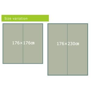 い草ラグカーペット リーフ柄 『NSリーフ』 ブラウン 約176×230cm (裏面:滑りにくい加工) 〔送料無料〕