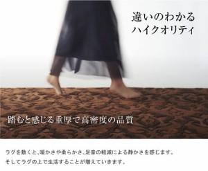 スミノエ ラグマット NEXTHOME BOUQUET RUG 140×200cm ブラウン 【送料無料】