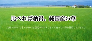 純国産/日本製 糸引織 い草上敷 『岩木』 三六間6畳(約273×364cm)  【送料無料】