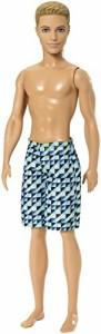 バービーBarbie Beach Ken Doll