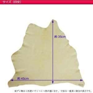 春日 キョンセーム 一枚物 15デシ