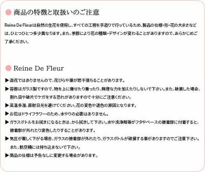 Reine De Fleur レンデフロール バラ 日本製 I-A