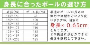 naito(ナイト工芸) 日本製 アルミ 2段伸縮式ノルディックウォーキング