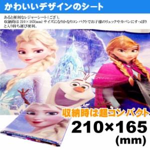送料無料 アナと雪の女王 レジャーシート ござ 90×60cm VS1 Sk600