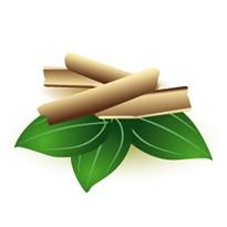 【メール便可】シナモンバーク 10ml 【アロマオイル/精油/エッセンシャルオイル