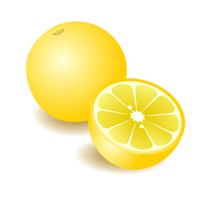 【メール便可】グレープフルーツホワイト 10ml 【アロマオイル/精油/エッセンシャルオイル】