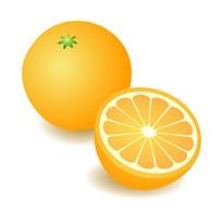 【メール便可】オレンジスィート 10ml 【アロマオイル/精油/エッセンシャルオイル】