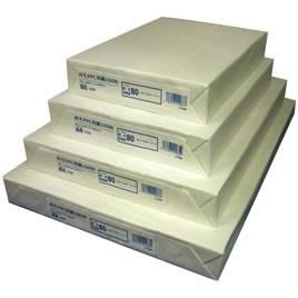 王子製紙 再生PPC用紙100W(500枚)B5【返品・交換・キャンセル不可】【イージャパンモール】