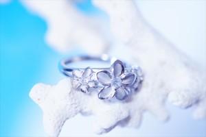 3プルメリア クリアキュービックジルコニア装飾 花びら縁取り光沢仕上げ レディース ハワイアンジュエリー シルバー925 リング