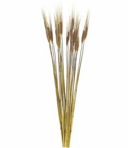 ハロウィンドライフラワーリーフ 二条大麦(25本) [DO50090]【フェイク グリーン 資材 造花 フラワー 装飾 DIY 飾り付け】