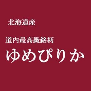 【送込】「特A」受賞 28年産北海道産ゆめぴりか  玄米10kgx1袋 長期保存包装