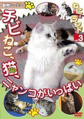 送料無料有/動物ムービー DVDシリーズ ねこ (猫) ざ ランド 3 (チビねこ、猫、ニャンコがいっぱい)/趣味教養/DENA-1203